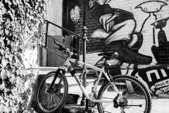 Grunge-Cycle