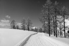 Skiing On Tauplitzalm